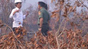 http://www.aktualpost.com/2015/09/aksi-berani-presiden-jokowi-tanpa-masker-di-lahan-kebakaran-hutan/